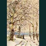 Karácsonyi képeslap - D8150