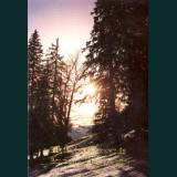 Karácsonyi képeslap - D8240