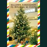 Karácsonyi képeslap - D8320