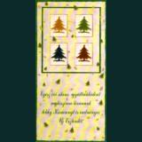 Karácsonyi képeslap-D8547