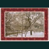 Karácsonyi képeslap - D8716