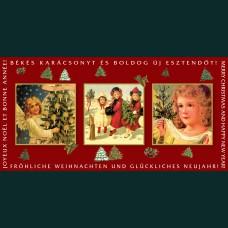 Karácsonyi képeslap-D8736