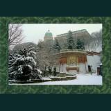 Karácsonyi képeslap - D8717